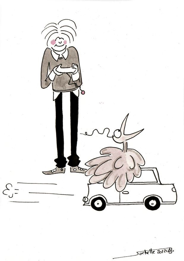 wilfried-et-theo---voiture-telecommandee.jpg