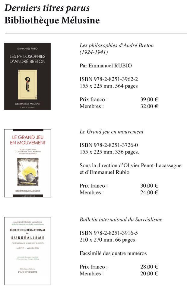 Bibliotheque-Melusine-4.jpg