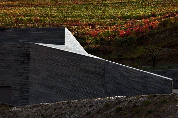 QUINTA-DO-VALLADO-WINERY-by-GUEDES---DE-CAMPOS-Architecture.jpg