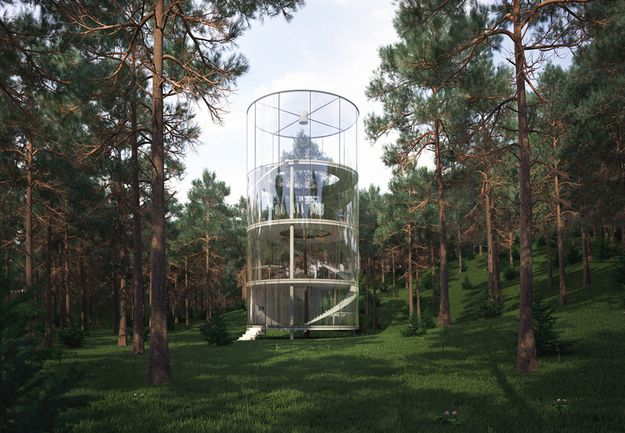 TREE-IN-THE-HOUSE-by-A-MASOW-DESIGN-STUDIO--2013-O-copie-4.jpg