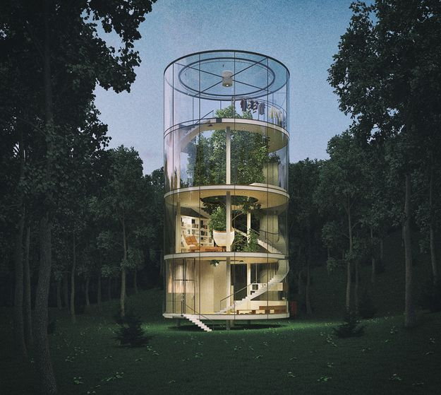 TREE-IN-THE-HOUSE-by-A-MASOW-DESIGN-STUDIO--2013-ON-ARCSTRE.jpg