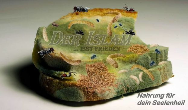 Der Islam - Verschimmeltes Brot 6 klein