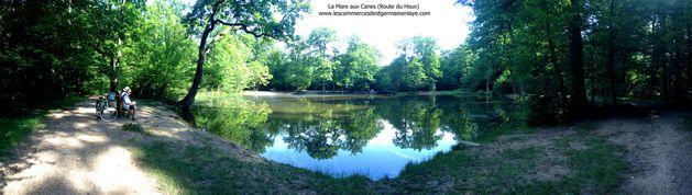 La Mare aux Canes (Route du Houx) à Saint-Germain-en-Laye