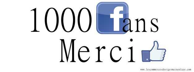 1000 fans facebook merci