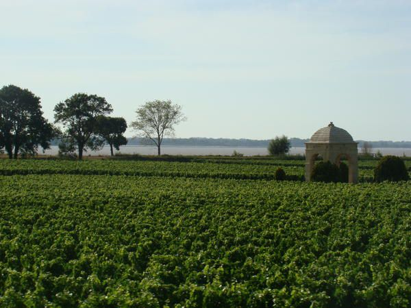Blaye--10-.jpg