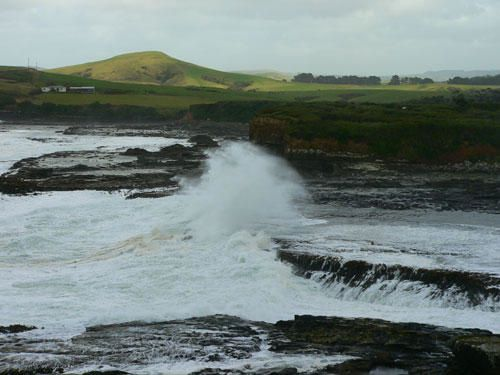 144-catlins-curio-bay-vaguesimmenses.jpg