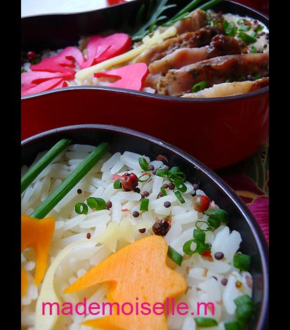 Bento hibiscus mars 2012 10