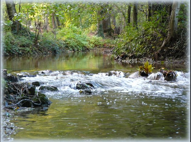 Les pierres de ma rivière (69)
