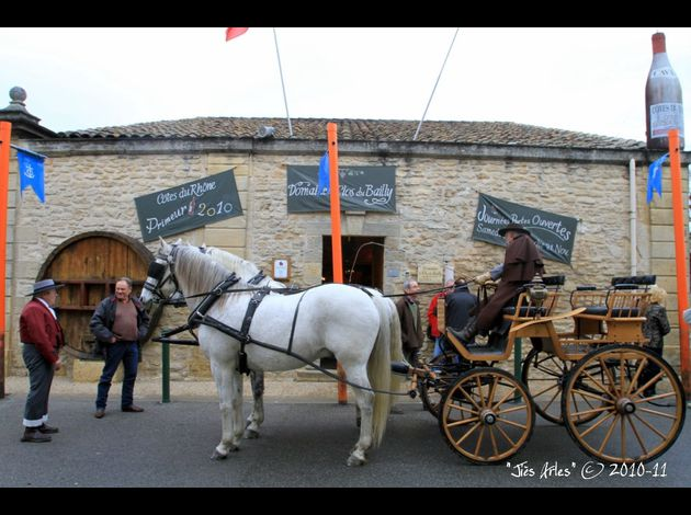 101120JS ClosBaillyRemoulins 001