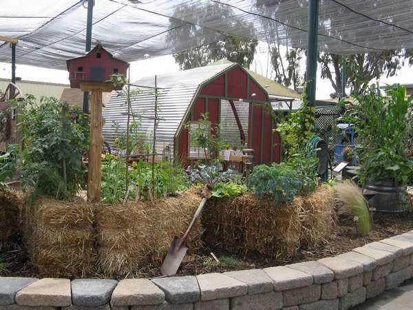 NATURES - Culture sur paille StrawBaleGarden (13)