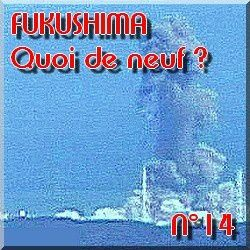 FUKUSHIMA - Actualits en direct - informations l-copie-12