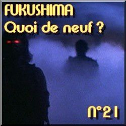 FUKUSHIMA - Actualits en direct - informations l-copie-19