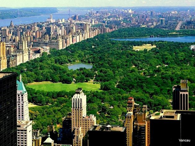 central-park-new-york-wallpaper-1