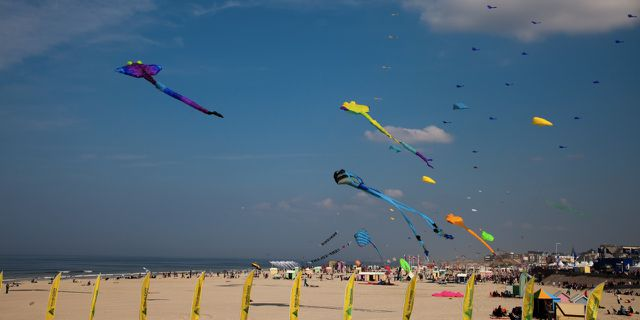 BERCK 4118
