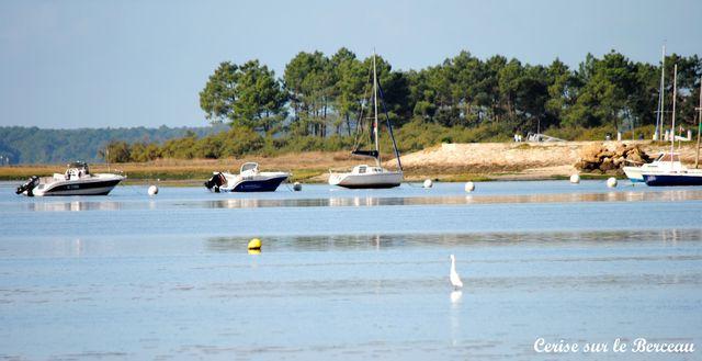 bateaux-andernos.jpg