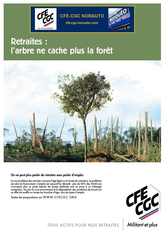 Affiche Retraite Emploi Arbre JPG2