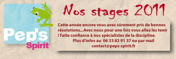 offre-stages-2011 01