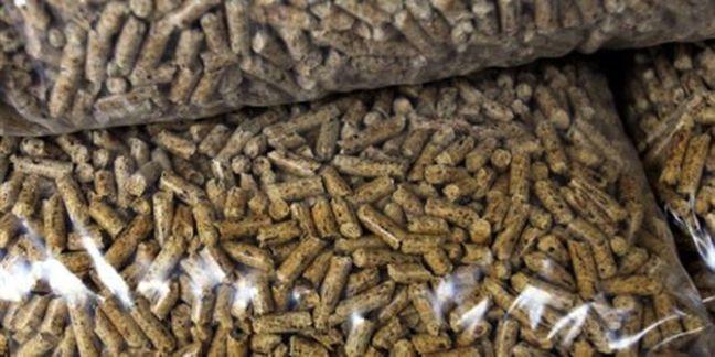 1227796 3 954d le-chauffage-au-bois-energie-ou-biomasse-se