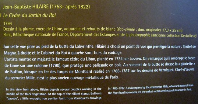 Jardin-des-Plantes-2 4985
