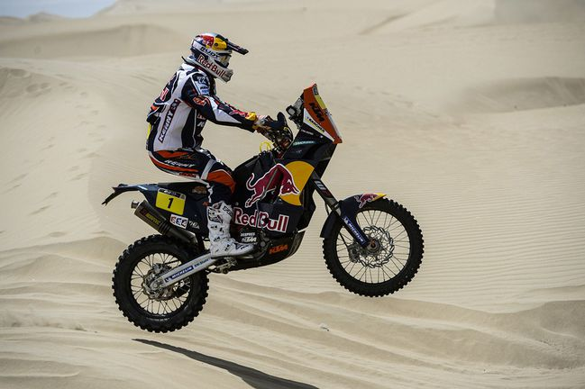 cyril_despres-Dakar-2013.jpg