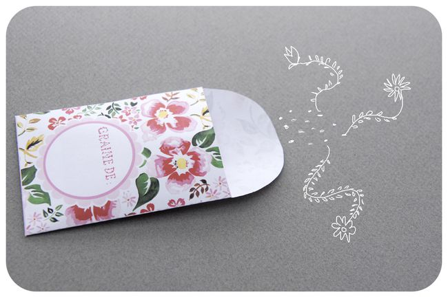 free printable package for seeds gratuit sachet graines 6