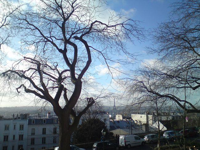 T.Eiffel-vue-de-Montmartre-jan-14.jpg
