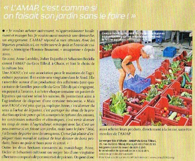 amap 001