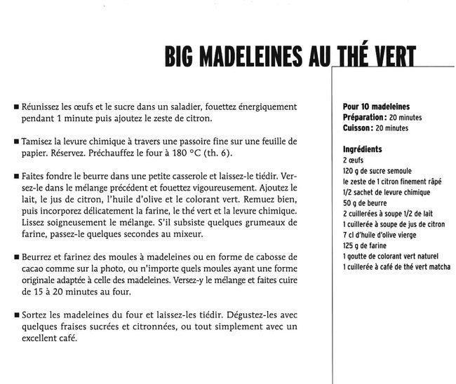 100 Recettes De Gateaux page14 image1 copie