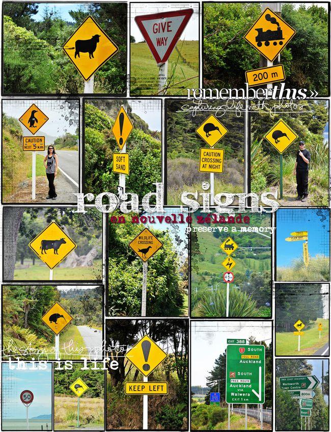 34-road-signs-1.jpg