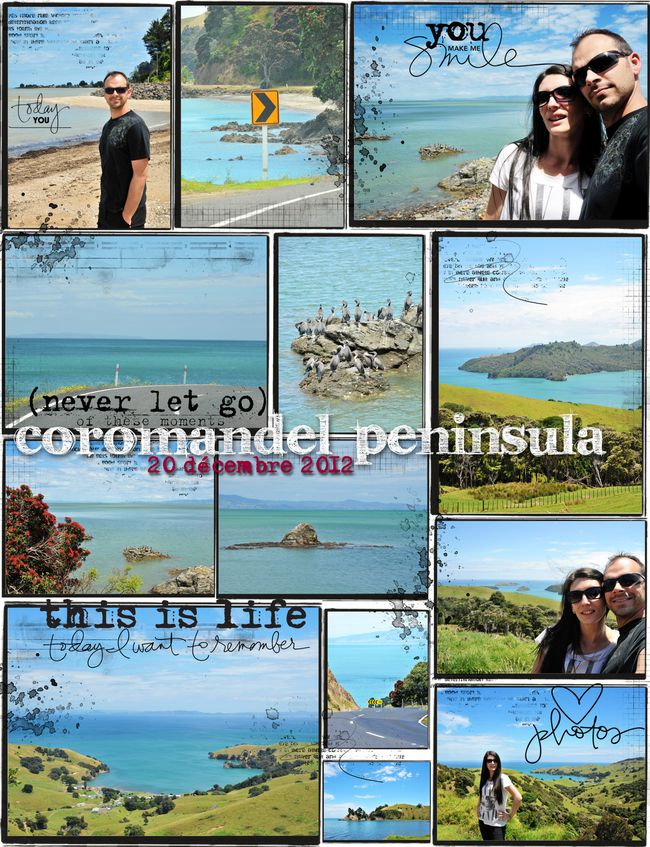 8 coromandel-1