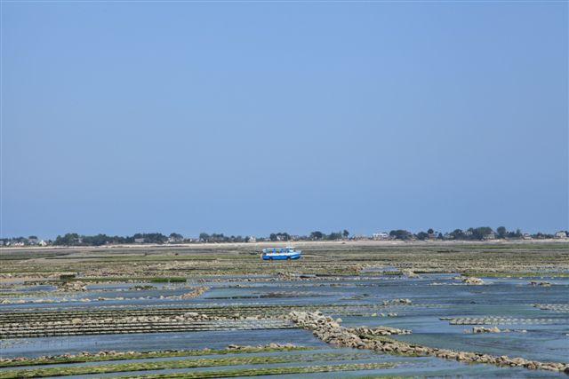 Bateau amphibie ile Tahitou