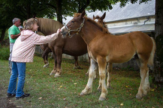 equestria 4744