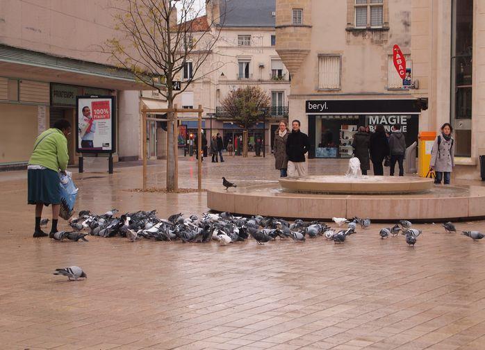 Rubrique nécrologie de Jean-Marie Sexfriend - Page 3 Dame-aux-pigeons-et-pigeons-Poitiers