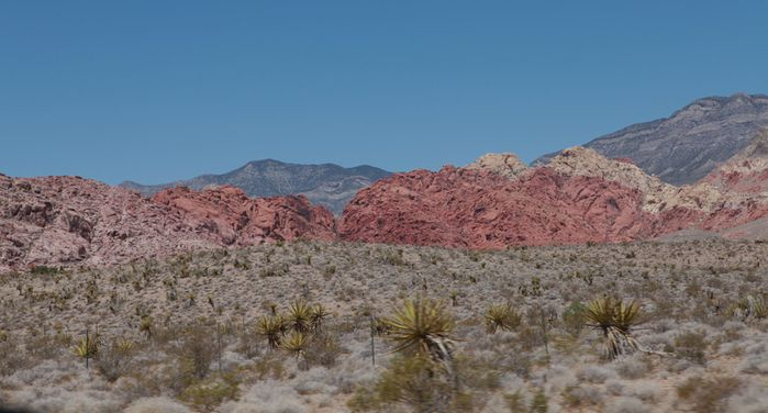 red rock canyon4