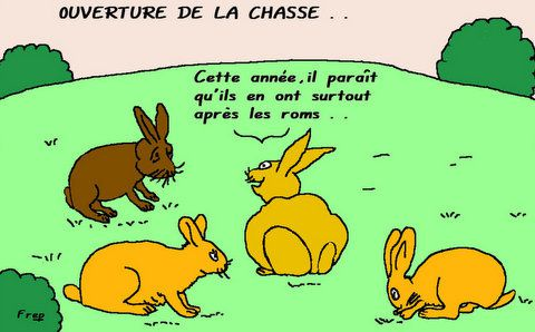 lapins chasse