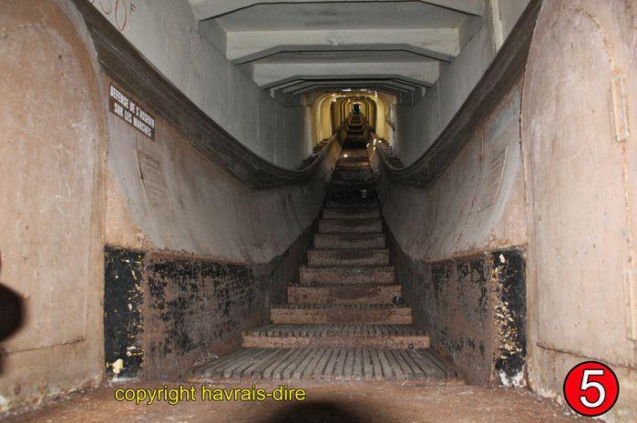 visite esc-roul 14-12-2010 (123)