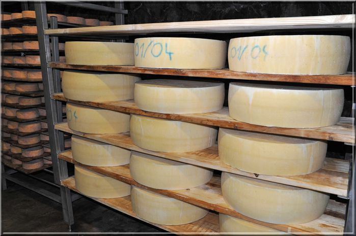 fromages 17