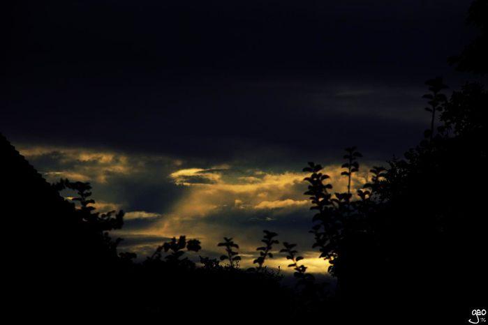 02-11-2012---UN-SOIR.JPG