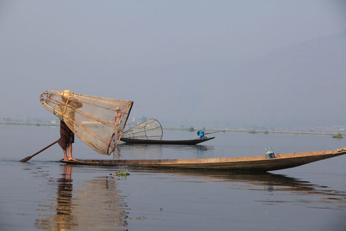 nasse-birmane.jpg