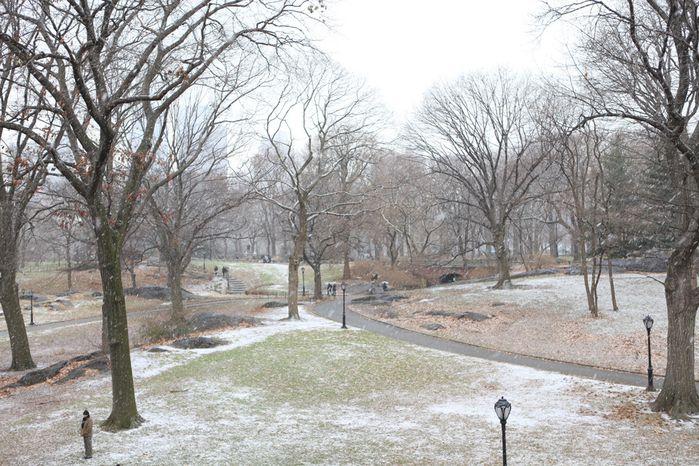 central park sous la neige 1