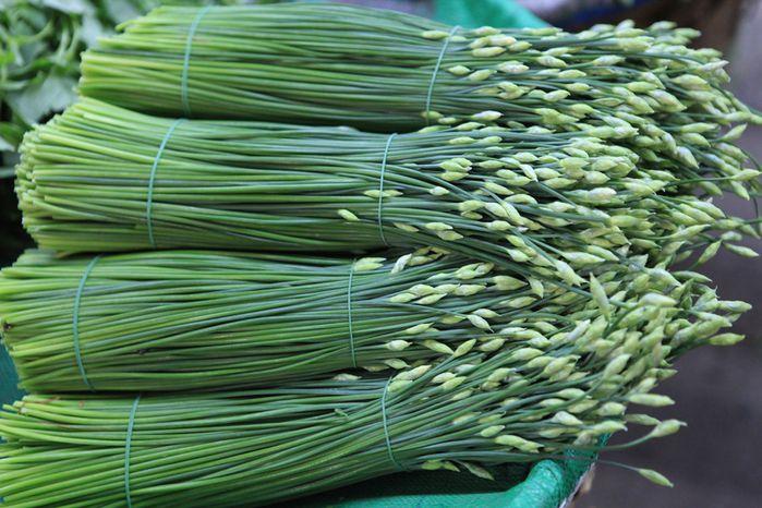 herbes aromatiques marché de Bangkok