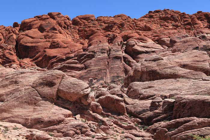 red rock canyon1