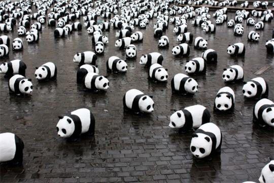 Manif-de-Pandas-2.jpg