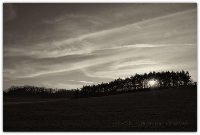 Paysages-3090-darksepia--copie-1.jpg