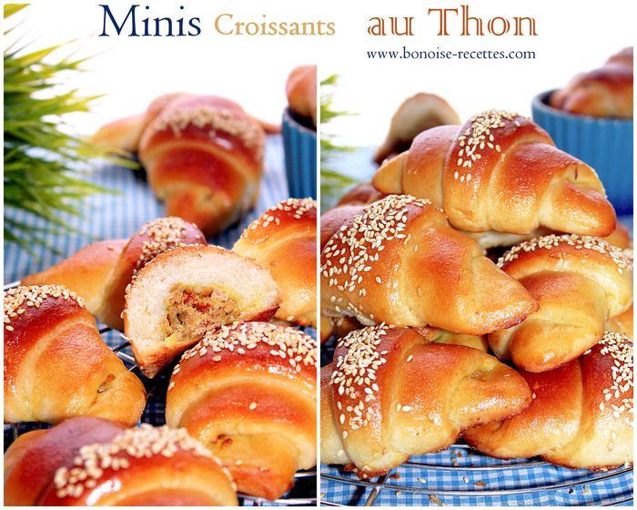 minis-croissants-au-thon4.jpg