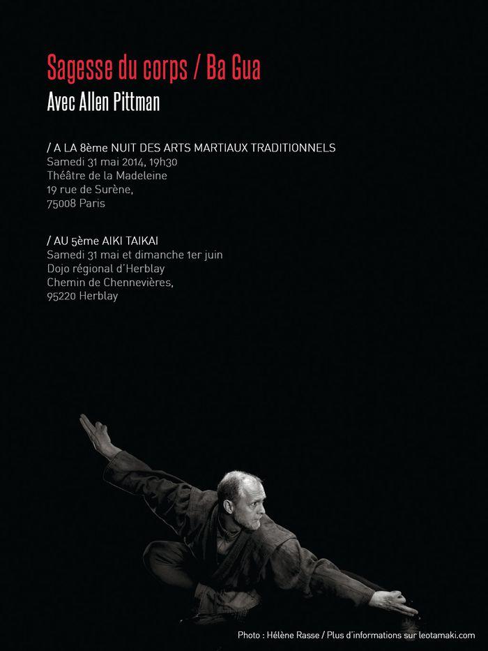 Allen Pittman NAMT et AikiTaikai 2014