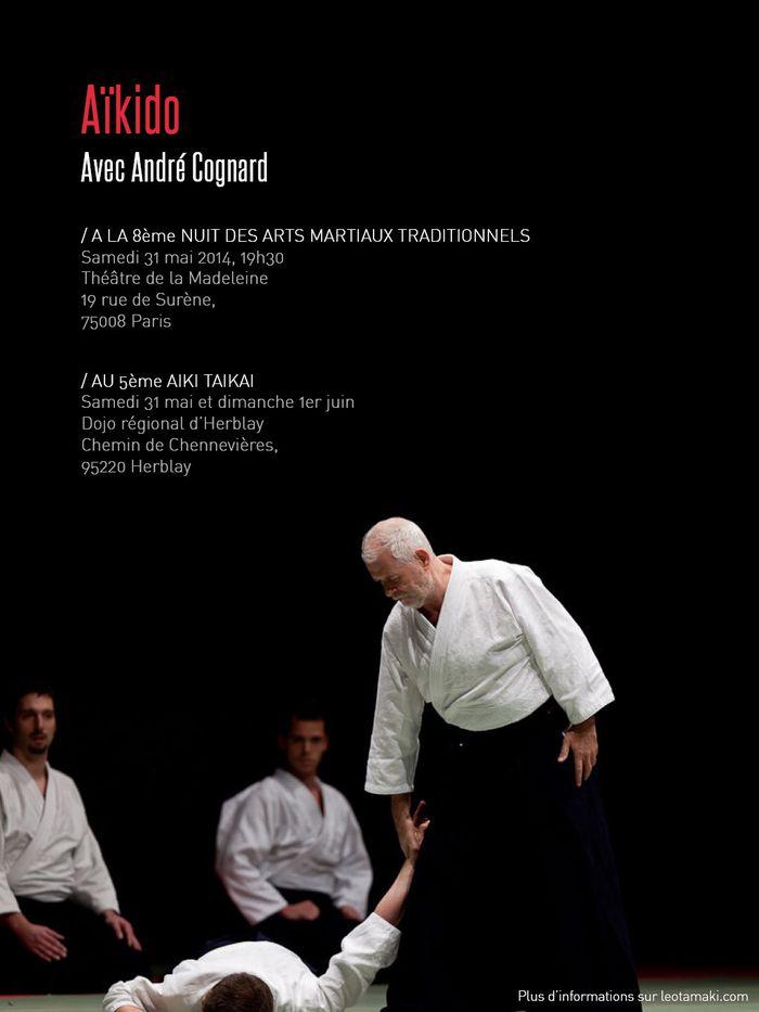 André Cognard NAMT et AikiTaikai 2014
