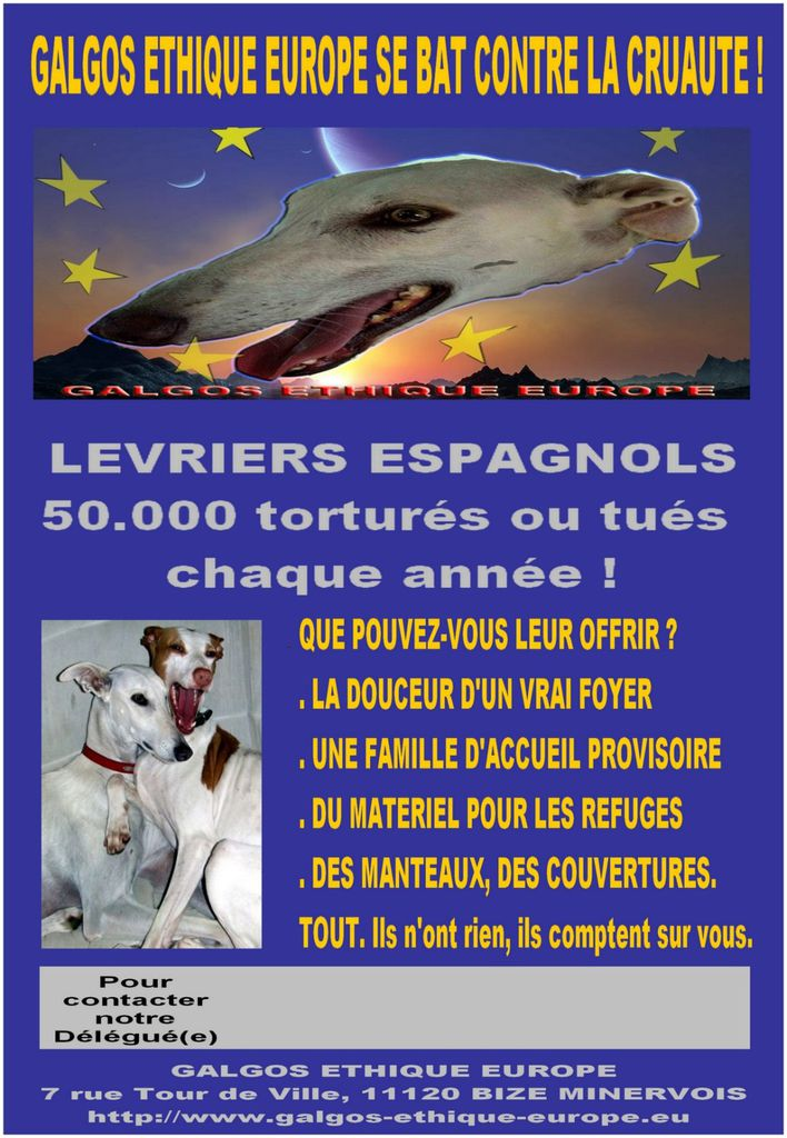 AFFICHE-GEE-RESOLUTION150.