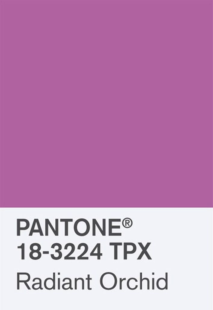 RADIANT-ORCHID---color-of-the-year-2014-by-PANTONE.jpg