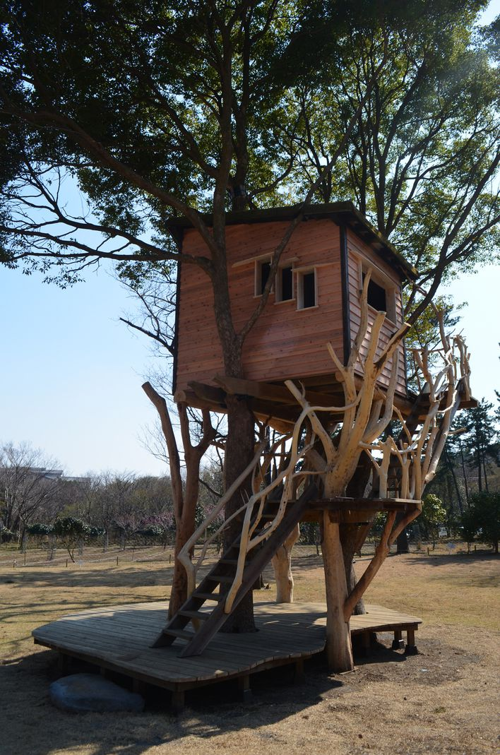 treehouses-by-takashi-kobayashi--japan-higashi_izu00.jpg